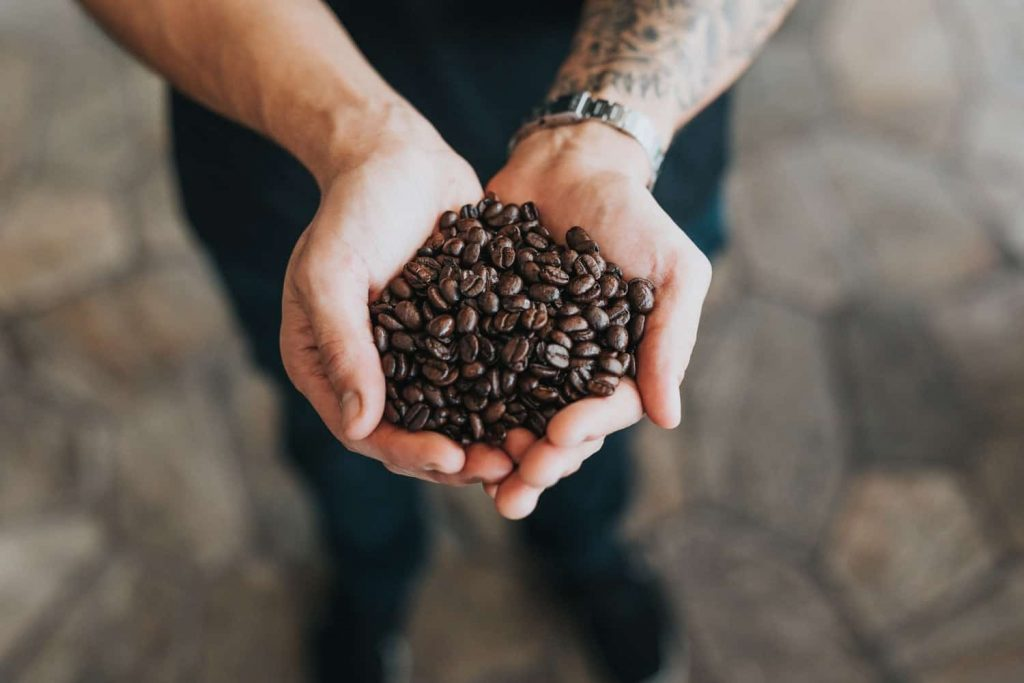 10 Best Coffee Beans That Will Energize You Every Morning