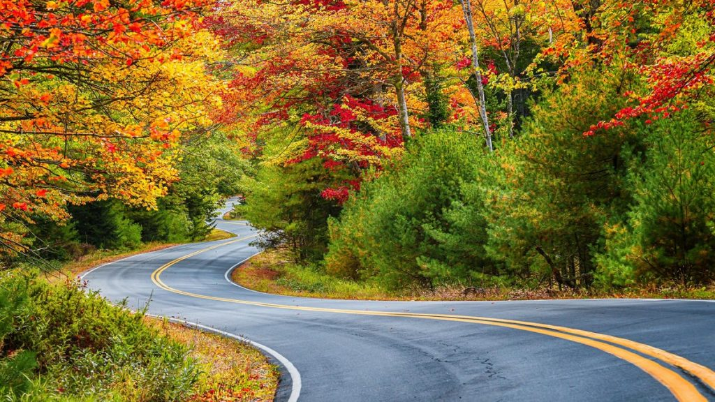Use This Map to Plan Your Fall Foliage Trip Before Everything's Booked